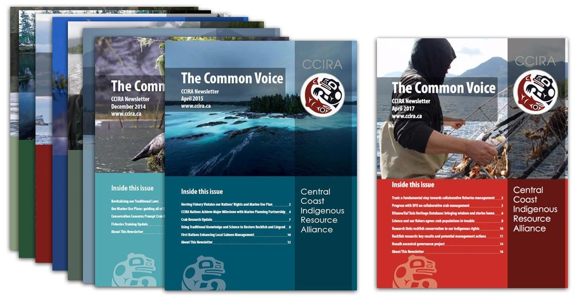 The Common Voice, CCIRA newsletters laid out in a bunch.
