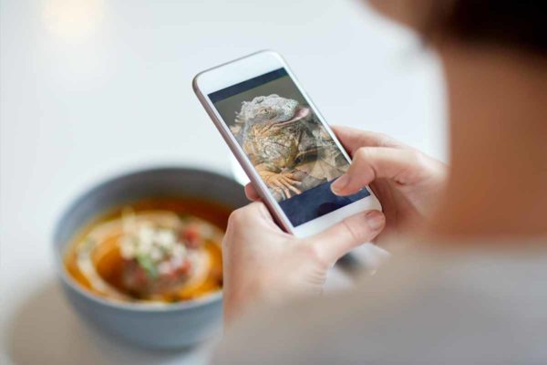 Looking over the shoulder of a person takes a photo of their soup with their smart phone, but a lizard is the screen.